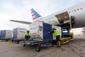 AmericanAirlines-Loading-containers-smll
